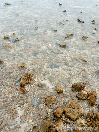Fine art photograph showing blocks of broken concrete, crusted with snails, in a smooth shallow sea