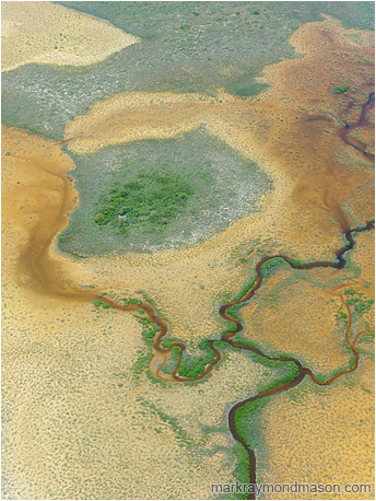 Abstact aerial photograph showing a river twisting through an orange marshy landscape