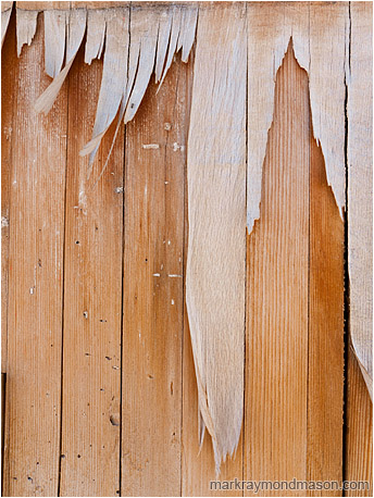 Abstract photograph showing paper fibres hanging like icicles from a pockmarked wooden wall