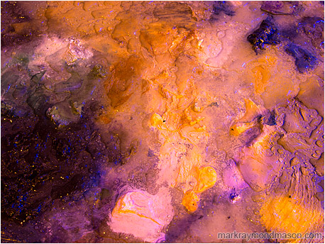 Abstract macro photograph showing dried clots of paint on an abandoned palette, flooded with rainwater