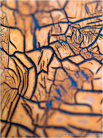 Abstract macro photograph of a network of blue cracks in an old orange cracked rubber gasket.